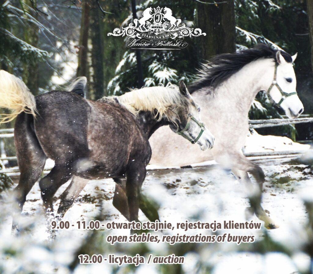 plakat-zimowa-aukcja_2